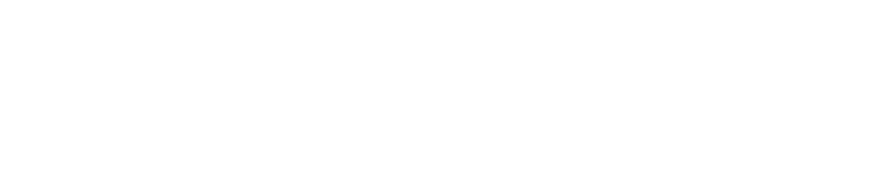 detechtors – Official LOGO 2 – no shadow